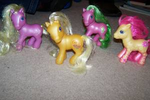 My Little Ponies (Ham Lake) for sale