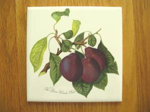 "H and R Johnson 6"" x 6"" English tile / trivet with Reine Claude Plum (Andover MA) for sale  Boston"
