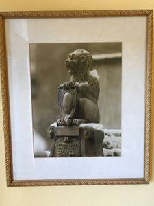 Beautiful picture (marina / cow hollow) $145