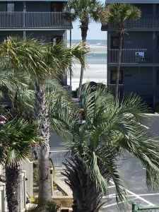 3 BR OCEAN VIEW CONDO STEPS FROM A GREAT BEACH! Book 2018 (NORTH MYRTLE BEACH) $1250 3bd