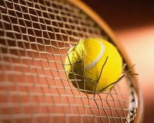 Tennis Racquet Stringing Services (North Richland Hills) for sale  Austin