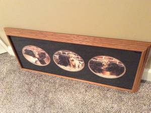 Labrador Puppies Framed Picture (Olathe) for sale