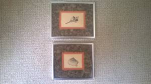 Seashell Pictures (LINCOLN PARK) $10
