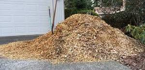 free delivery of wood chip mulch today  must live within 1- minutes o (near Millbrook High School)